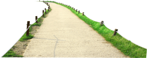 Clear path to website conversions